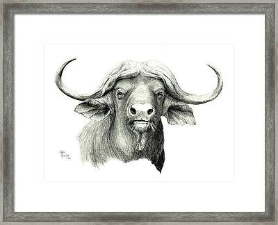 Cape Buffalo Framed Print by Mary Rogers