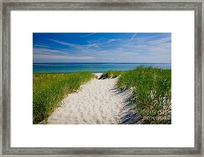 Cape Cod Bay Framed Print by Susan Cole Kelly