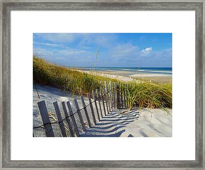 Cape Cod Charm Framed Print by Dianne Cowen