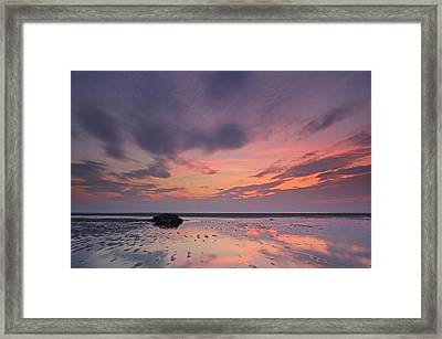 Cape Cod Mayflower Beach Framed Print by Juergen Roth
