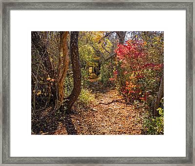 Cape Cod Path Framed Print
