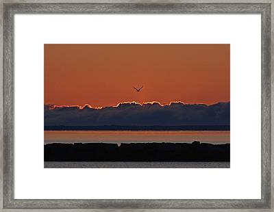 Cape Cod Sunrise #2 Framed Print