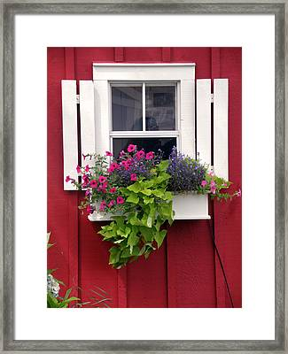 Cape Cod Window Box Framed Print by Jean Hall