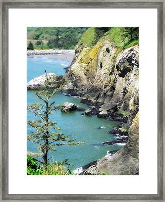 Cape D View Framed Print by Arabella Marie