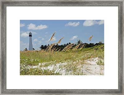 Cape Florida Framed Print by Kelly Wade