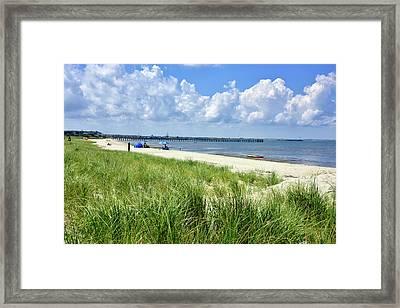 Cape Henlopen Delaware Framed Print by Brendan Reals