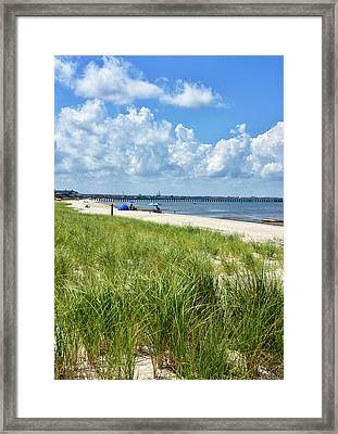 Framed Print featuring the photograph Cape Henlopen State Park by Brendan Reals