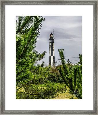 Cape Henry Light From The Dune Framed Print