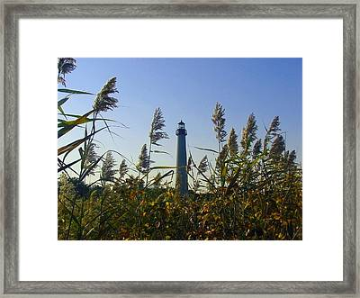 Cape May Light Autumn Framed Print by Kevin  Sherf