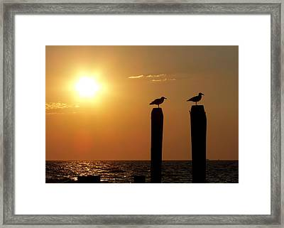 Cape May Morning Framed Print by JAMART Photography