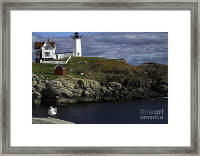 Cape Neddick Lighthouse Framed Print by Mim White