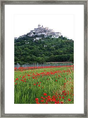 Capestrano And Poppy Fields Framed Print by Tom  Doherty