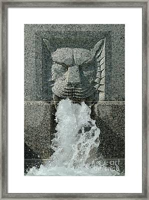 Senate Fountain Lion Framed Print