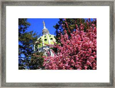 Capitol In Bloom Framed Print
