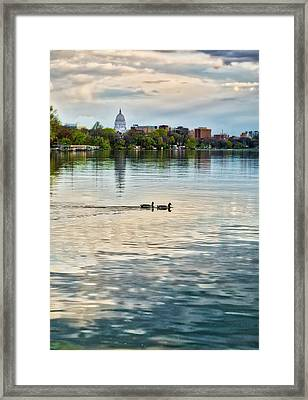 Capitol -madison-wisconsin From Tenney Park Framed Print by Steven Ralser