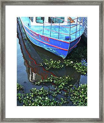 Cap'n Tee Henderson Swamp Framed Print by Lizi Beard-Ward