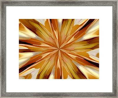 Cappachino Framed Print