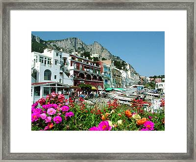 Capri Framed Print by Donna Corless