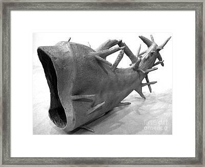 Capricornucopia Framed Print by Xoey HAWK
