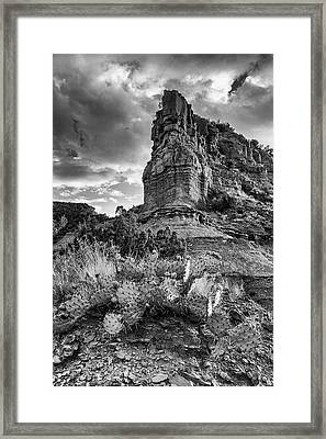 Caprock And Cactus Framed Print by Stephen Stookey