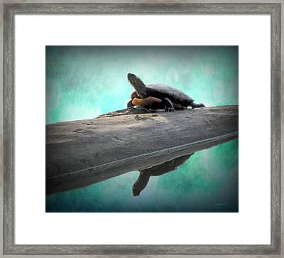 Captain's Log Framed Print