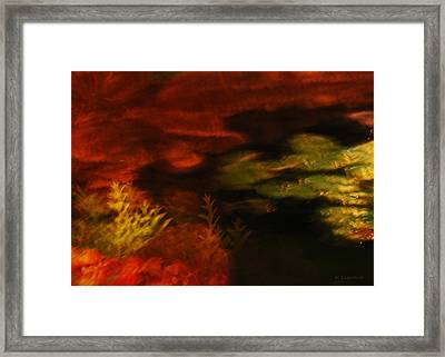 Captured Light - Lily Pads And Ferns Framed Print by Kerri Ligatich