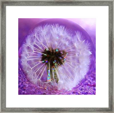 Captured Wish Framed Print by Krissy Katsimbras