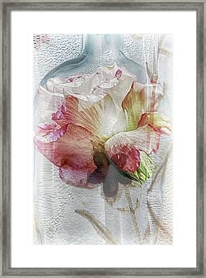 Capturing Jessicca Framed Print