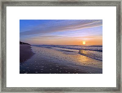 Capturing My Heart Framed Print by Betsy Knapp