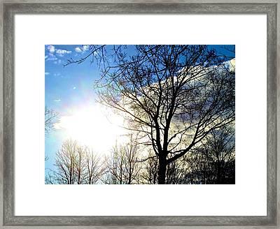 Capturing The Morning Sun Framed Print