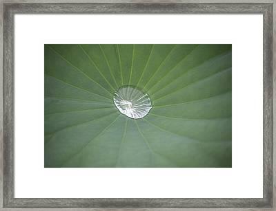 Capturing Water Framed Print by Linda Geiger