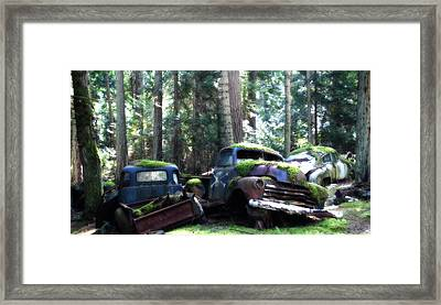 Car Lot In The Forest Framed Print by Diane Smith