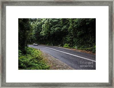 Car Travelling Through Rainforest In West Tasmania Framed Print