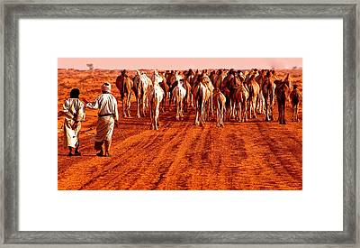 Caravan In The Desert Framed Print by Kobby Dagan
