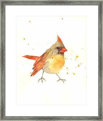 Cardinal - Female Cardinal Framed Print by Alison Fennell