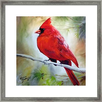 Cardinal 18 Framed Print by Marcia Baldwin