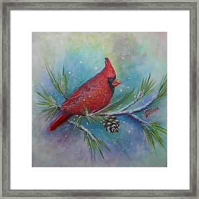 Cardinal And Delta Snow Framed Print by Sheri Hubbard