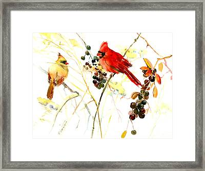 Cardinal Birds And Berries Framed Print