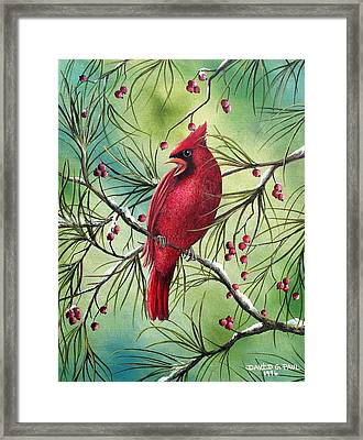 Cardinal Framed Print by David G Paul
