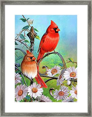 Cardinal Day 3 Framed Print