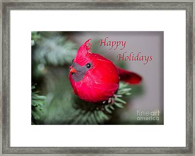 Cardinal Happy Holidays Framed Print