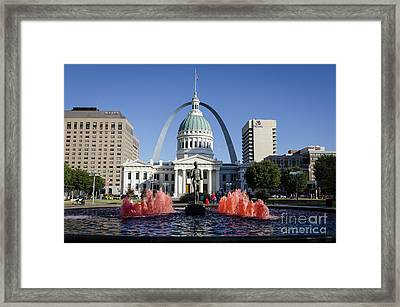 Cardinal Nation Framed Print by Andrea Silies