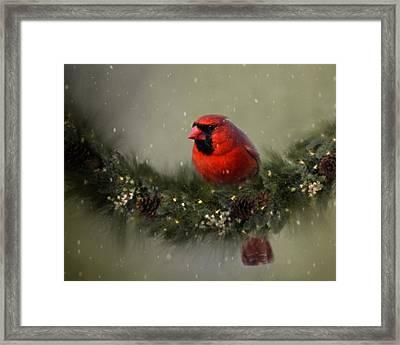Cardinal On Garland Framed Print by Ann Bridges