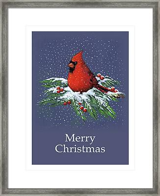 Cardinal On Snowy Pine Branches, Merry Christmas Framed Print
