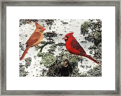 Cardinal Pair II Framed Print by Philip Hall