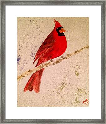 Cardinal Rules Framed Print by Nick Young