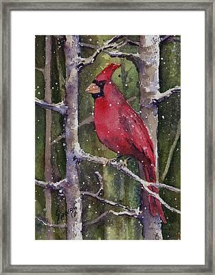 Cardinal Framed Print by Sam Sidders