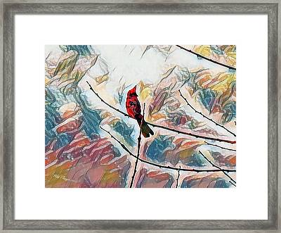 Cardinal Spring Framed Print by Wild Thing