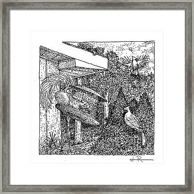 Cardinals And Squirrels / Black And White Framed Print