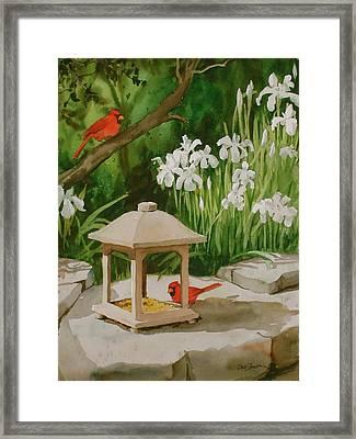 Cardinals Feeding Framed Print by Faye Ziegler